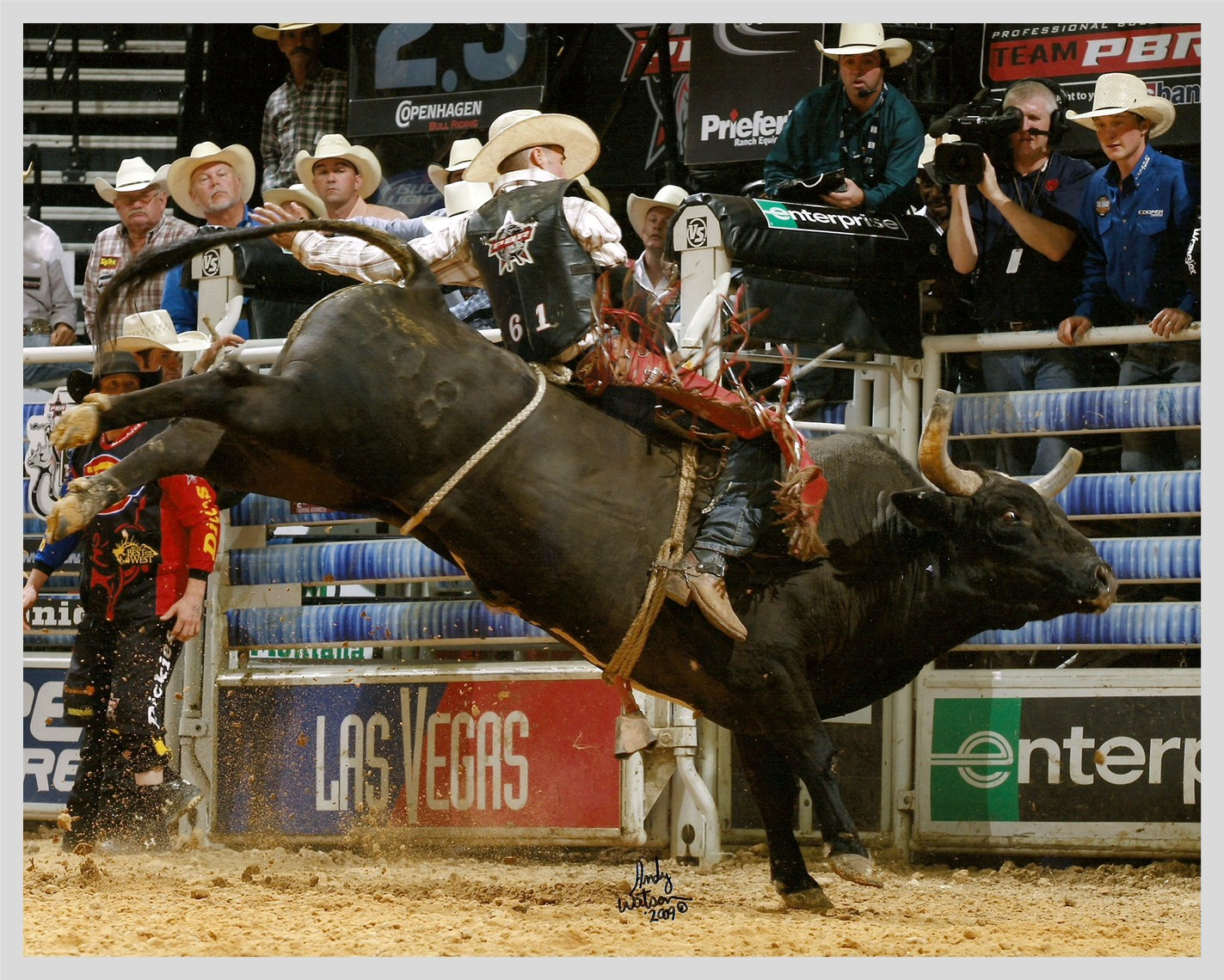 Rodeo Bucking Bulls http://www.scalcobuckingbulls.com/